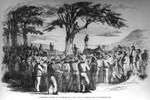 A murderer lynched by Californian emigrants - from a sketch by our own correspondent
