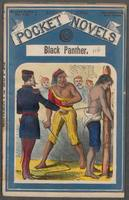 Black Panther, the half-blood, or, The slaves of the silver mines: a tale of old Arizona