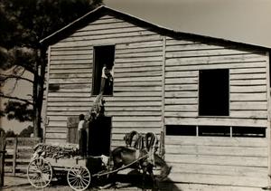 Loaded Cart and Barn
