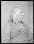 Chief Tawakoni Jim, side view. Oklahoma. Anadarko Wichita. Former U. S. Government scout. 1904
