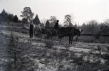 African Americans, cabin, ox & cart