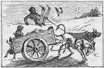 Family of ten riding a ox cart and the mule sends the driver flying