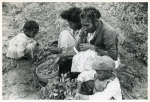 Project family picking peas in their garden, Flint River Farms, Ga. May 1939