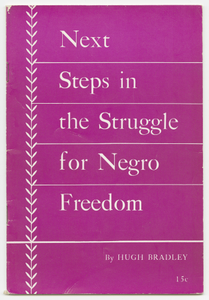 Next Steps in the Struggle for Negro Freedom