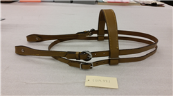 Bridle used at Lincoln Hills Cares