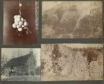 Photographs from Frank Teeter, Durango, Colorado:Caves; Caves