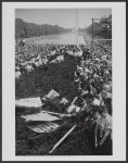 [Crowd around the Lincoln Memorial Reflecting Pool with signs in bushes at the March on Washington]