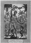 Malabar conjurors exhibiting dancing serpents