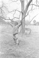Son of John Nixon playing on a tree limb in his yard in Autaugaville, Alabama.