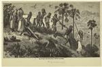 Slavers Revenging Their Losses
