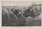 A Mohammedan prayer service in the desert