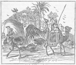 One man on a camel and another man on an ostrich