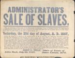 """Sale of Slaves"" Advertisement"