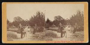 Flower Garden, H.S. Taft, St. Helena I[sland], S.C.