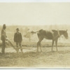 Booker T. Washington with student driving plow
