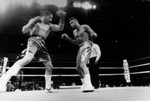 Boxing at the Olympic Auditorium