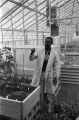 Agricultural scientist pointing at a plant in a greenhouse at Tuskegee Institute in Tuskegee, Alabama.