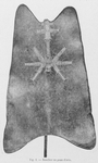 Fig 2 ; Bouclier en peau d'orix