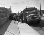 Children entering a school bus, Los Angeles, 1963