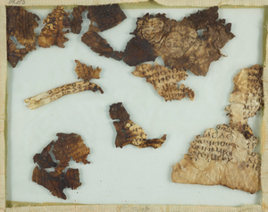 Fragments Nos. 14, 15 and 16, mounted under glass