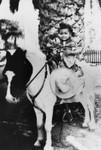 Child on pony