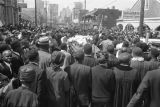 Casket moving down the street during Martin Luther King, Jr.'s funeral procession.