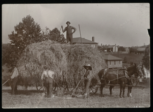 Agricultural Department-Farm Workers