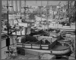 San Pedro, Cal. Apr. 1942. Fishing boats, formerly operated by residents of Japanese ancestry, tied up for the duration in Los Angeles harbor