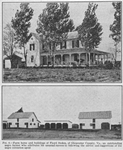 Farm home and building of Floyd Stokes, of Gloucester County, Va., an outstanding Negro farmer who attributes unusual success to following the advice and suggestions of the Negro extension agent