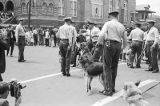 Walter Gadsden, a student at Parker High School, after being attacked by police dogs during a civil rights demonstration in downtown Birmingham, Alabama.