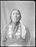 Little Hawk, Brule Sioux, South Dakota. U. S. Indian School, St Louis, Missouri 1904
