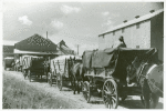 Part of cotton gin with wagonloads of cotton waiting in background at Delta and Pineland Company, Scott, Mississippi Delta, Mississippi, October 1939