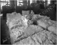 Exposition Cotton Mills