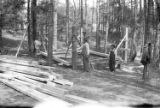 CCC construction projects at Crabtree Creek Recreation Demonstration Area, circa 1936-1940