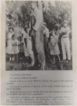 Rubin Stacey, lynched victim, hanging from a tree, surrounded by onlookers, including girls, Fort Lauderdale, Florida