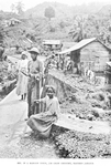 In a Maroon town, Jim Crow country, Eastern Jamaica