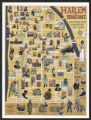 Harlem renaissance : one hundred years of history, art and culture / art by Tony Millionaire