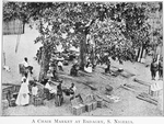 A chair market at Badagry, S. Nigeria