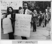 Picketers with signs, Hartford teachers strike, 1970