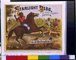 Starlight Bess, of pure Virginia stock