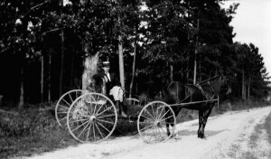 Superintendent W. B. Coggin in buggy.