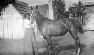 Annie E. Butler's horse. Supervising Teacher, Industrial Teacher