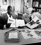 Examination of Plant Specimens