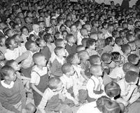 Negroes; Negro Children