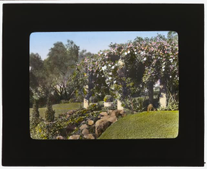 [Mrs. Francis Lemoine Loring house, 700 South San Rafael Avenue, San Rafael Heights, Pasadena, California. Bougainvillea pergola from flower garden to house]