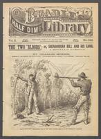 The two 'bloods', or, Shenandoah Bill and his gang: a mountain romance