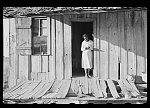 Daughter of Negro sharecropper, Arkansas