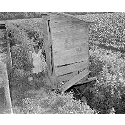 Girl next to outhouse