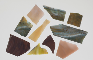 Ten shards of stained glass
