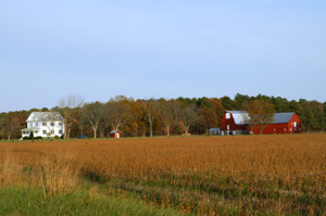 Thumbnail for Harriet Tubman Underground Railroad Byway - Church Creek Farmland